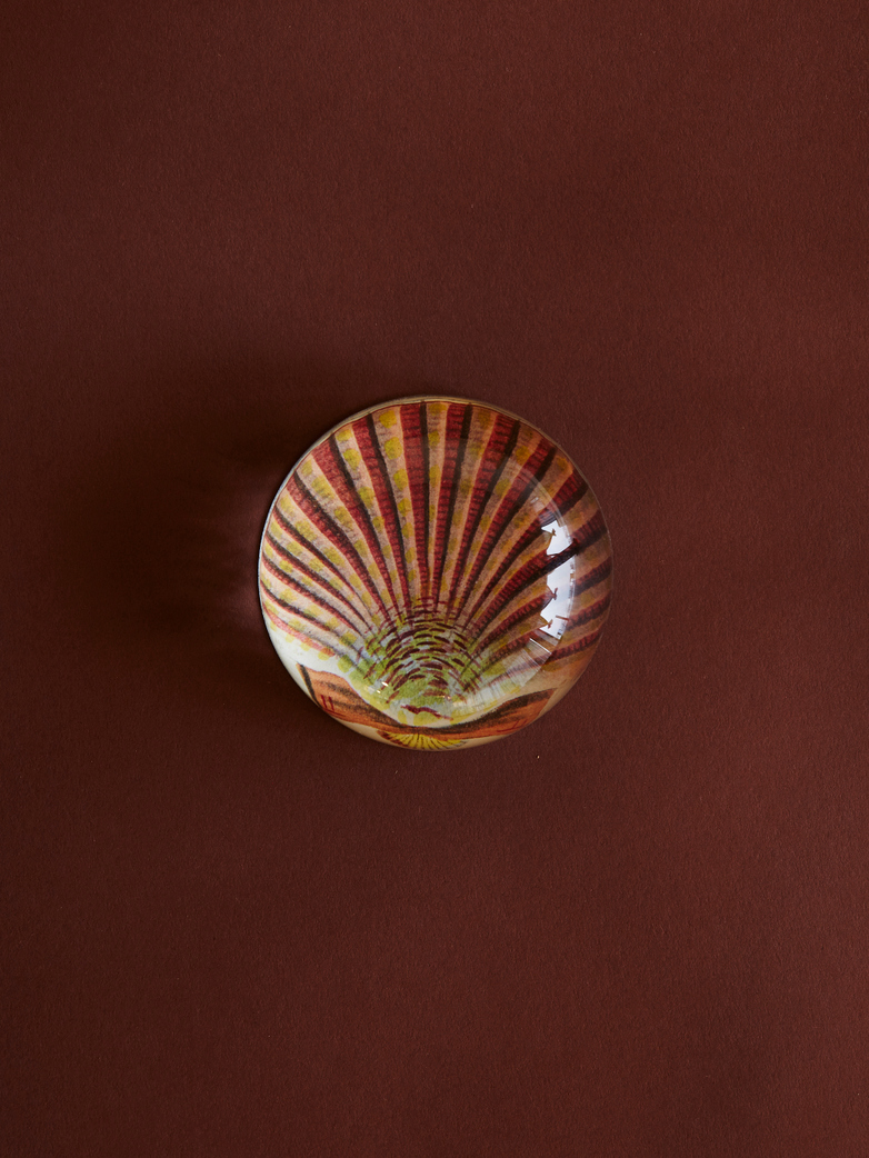 Pink Scallop Dome Paperweight