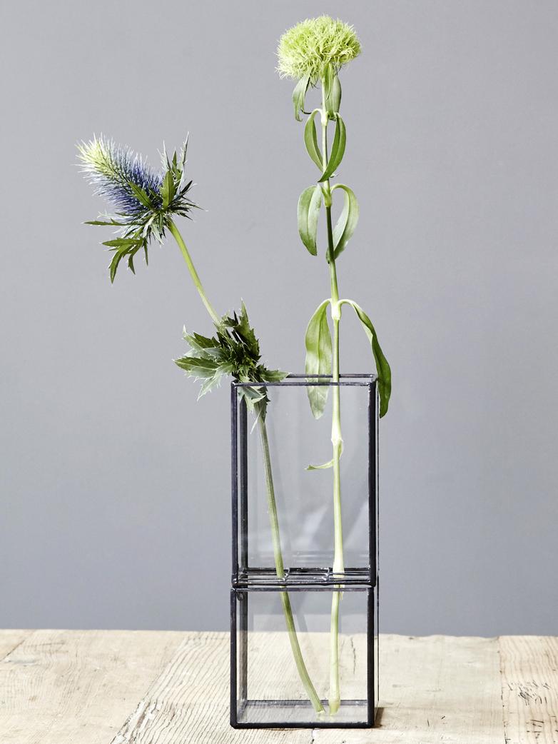 Hydro Vase